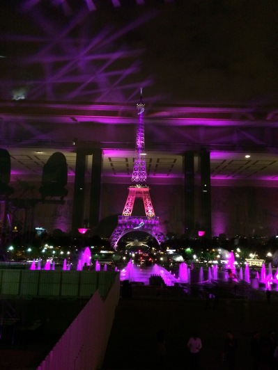 Wonderful-Pink-Eiffel